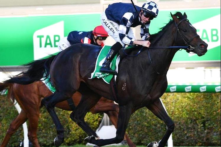 Huge day with the best horse in Australia back at the races.