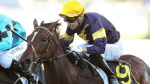 Tofane has secure a spot in The Everest. Picture: Getty Images