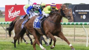 Winning Partner stormed to victory in the Balaklava Cup. Picture: Atkins Photography