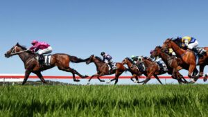 For Daily Telegraph. Sydney Metropolitan meeting at Kembla Grange racecourse. Race 5 winner Access Code ridden by Jay Ford.