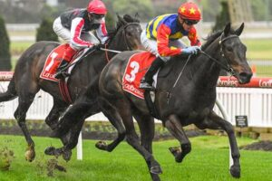 A promising type and Dirty Thoughts summed up most punters after Moonee Valley yesterday.