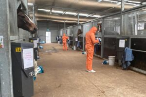 Commercial deep cleaning at Trent Busuttin and Natalie Young's Cranbourne stables