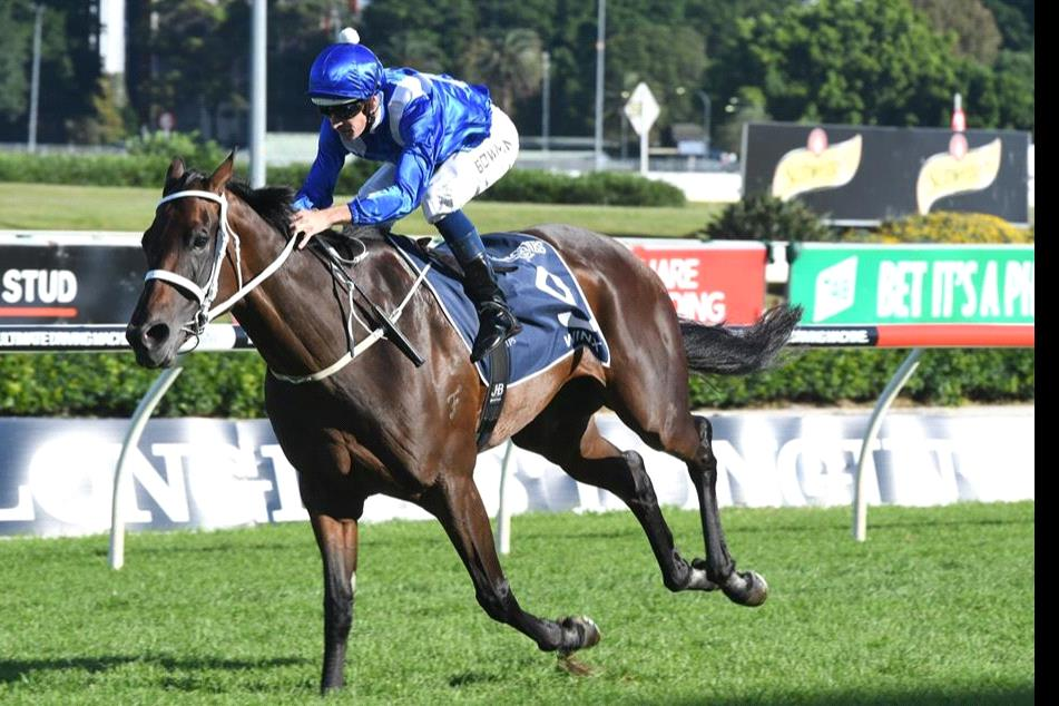 The Winx Stakes is the main event on Saturday.