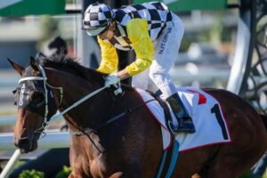 Ballistic Boy will be aimed at the 2021 Magic Millions carnival at the Gold Coast Racecourse.