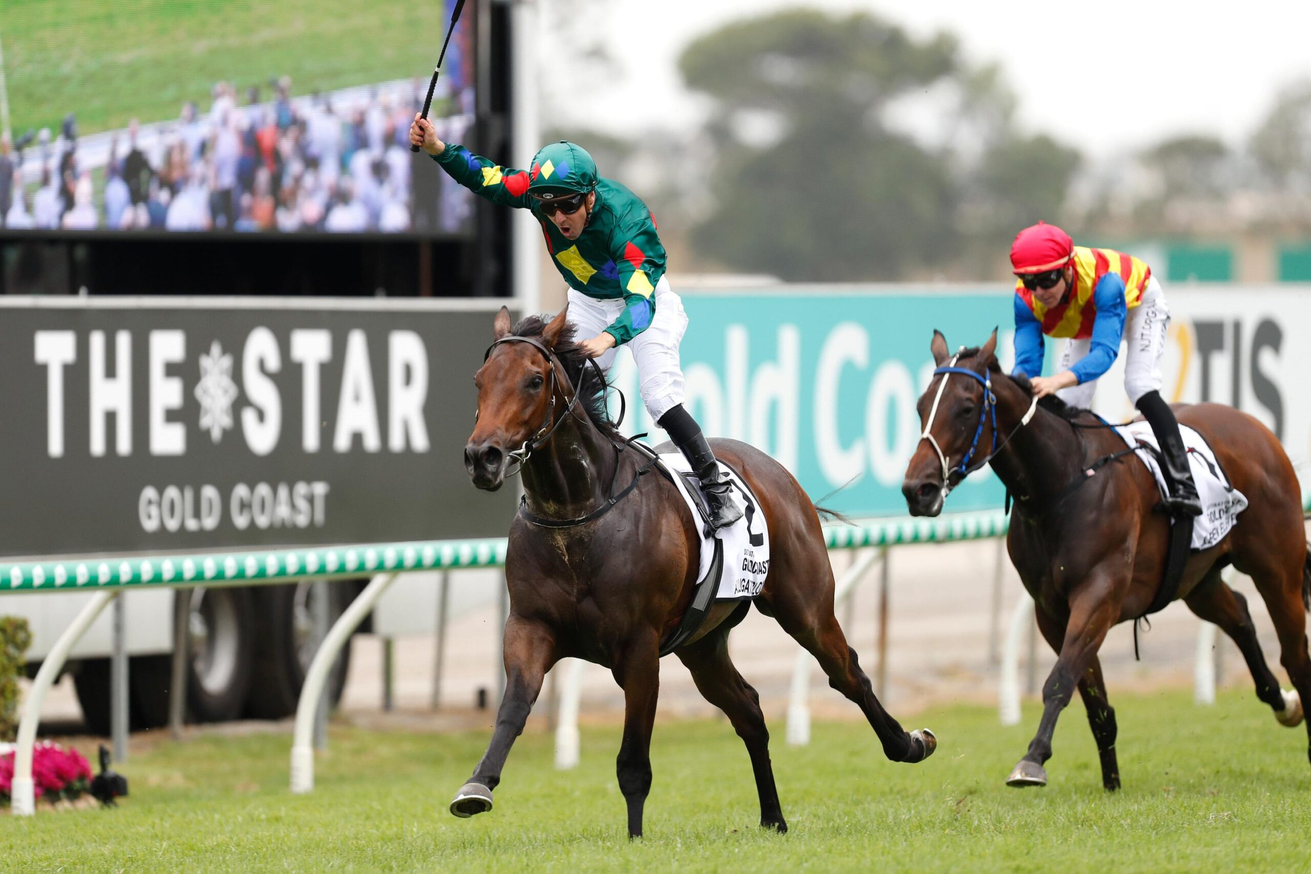 Alligator Blood has been disqualified from the Magic Millions with runner-up Eleven Eleven declared the new winner.
