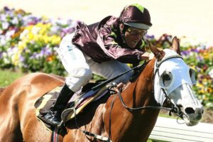 Popular galloper Apache Cat won the Bletchingly Stakes in 2007.