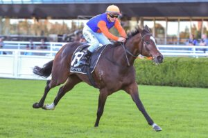 Nettoyer is in the Coolmore Legacy Stakes.