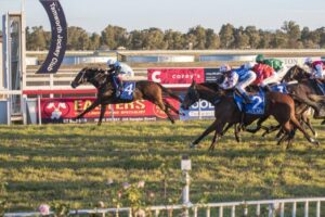 Race 5 is the best for a punt at Tamworth on Monday