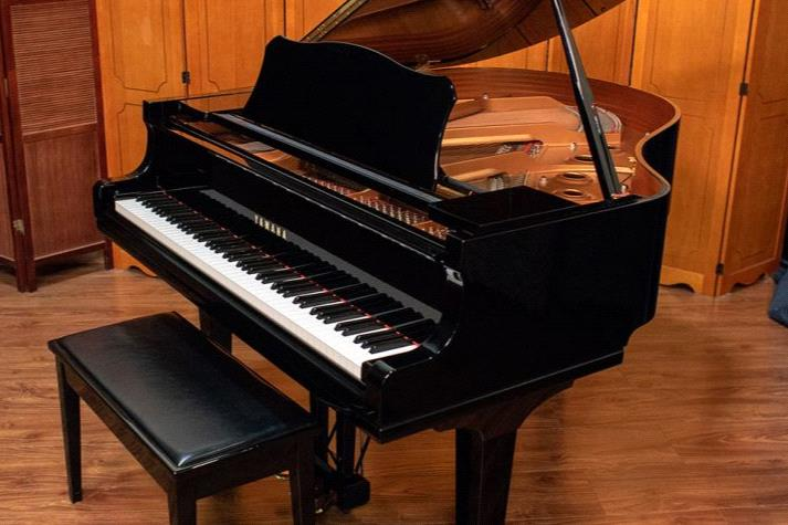 Grand Piano is tuned up for another win at Rosehill.