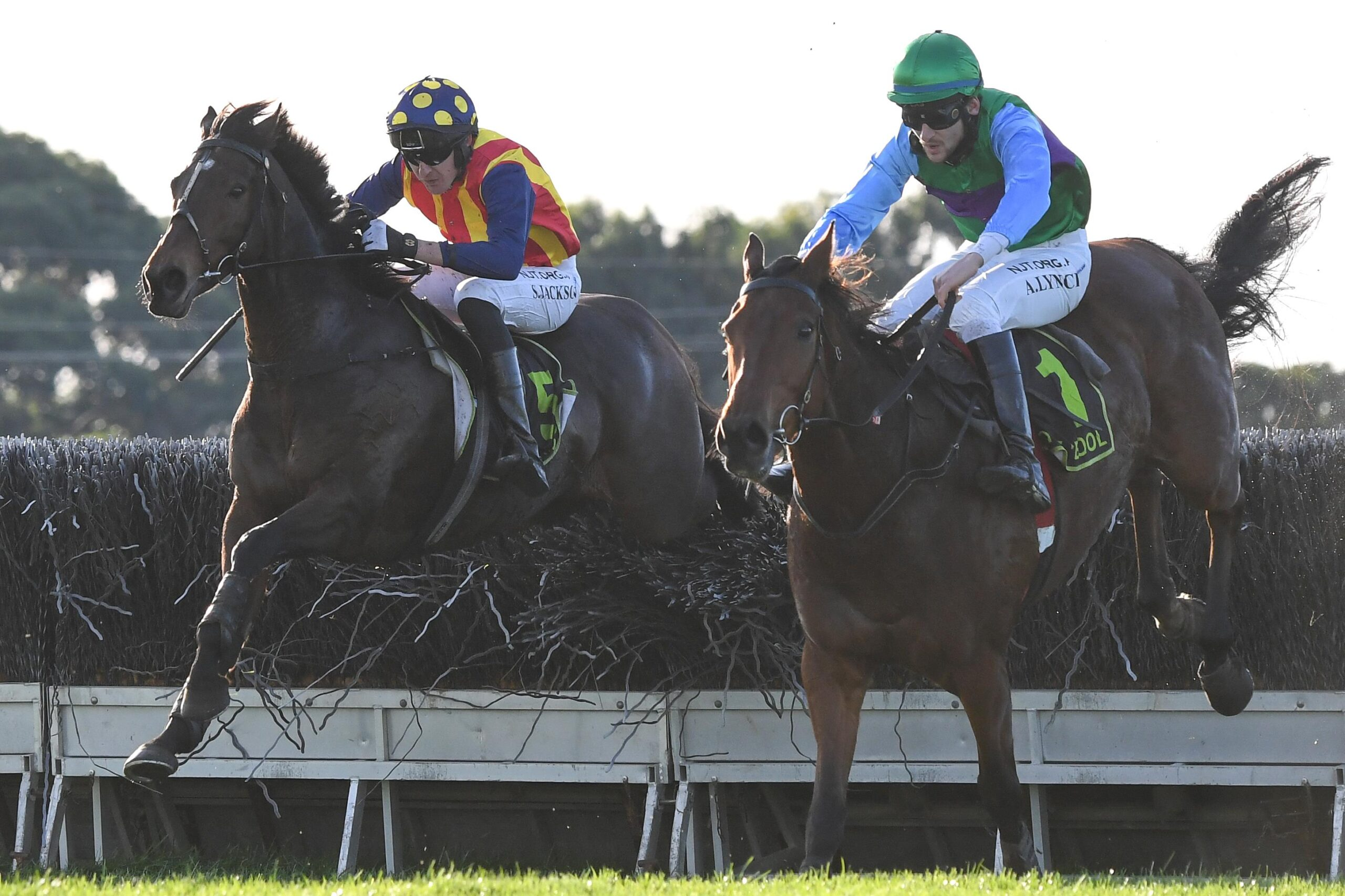 Ablaze (left) and Zed Em jump the last fence in the Grand Annual Steeplechase.