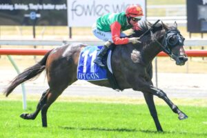 Zayydani will tackle Saturday's Schweppes Oaks at Morphettville.