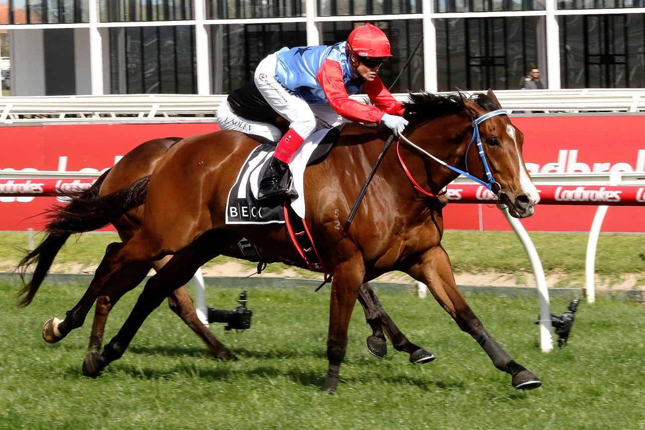 Admiral's Joker will chase a spot in the All-Star Mile at Caulfield.