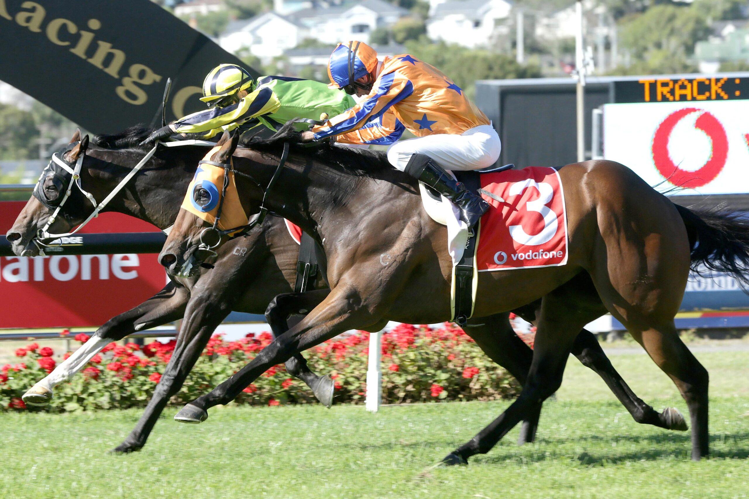 Racing in New Zealand is back on the radar.