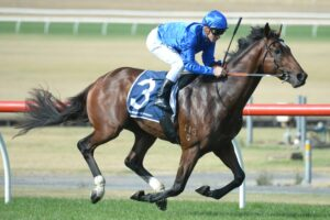A punter lost a huge bet on Chenier at Sandown on Wednesday.