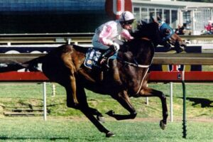 GI Might And Power Stakes day and it looks a super betting card..