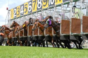 Canberra are racing at Queanbeyan Thursday