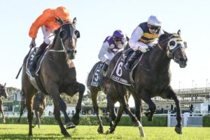 Zebrowski (left) and Quick Thinker (right) fought out Saturday's Australian Derby at Randwick.