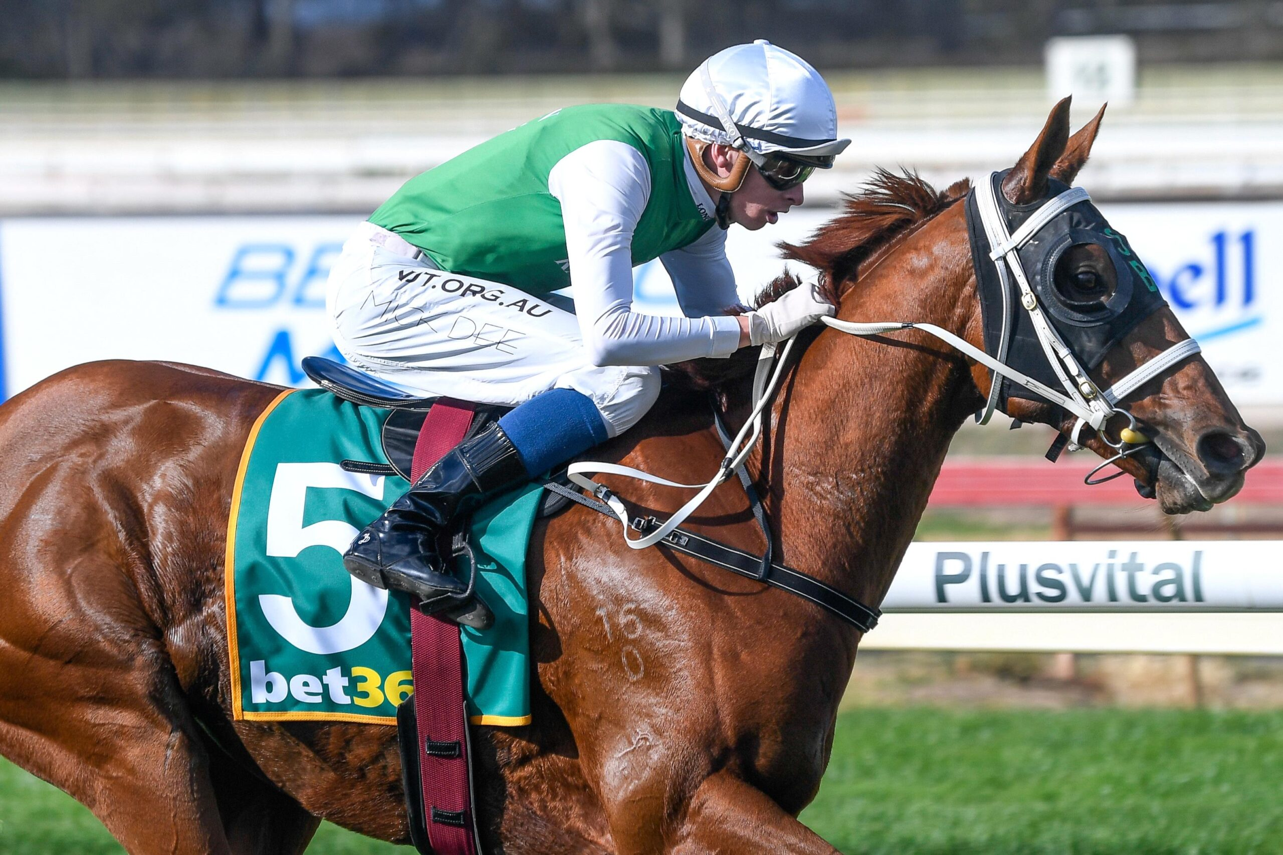 Hellova Street recorded his 20th career win in the Listed Golden Mile at Bendigo.