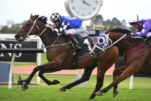 Mustajeer has been targeted at the Tancred Stakes.