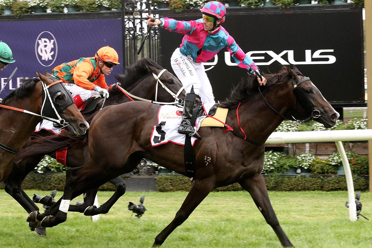 Brett Prebble stands high in the irons as Lunar Fox passes the post in the VRC Sires' Produce.