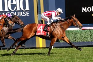 Super Seth has drawn the inside in the Randwick Guineas.