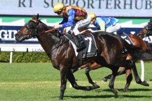 Prince Fawaz runs in the Hobartville Stakes.
