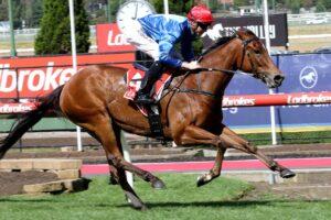Rubisaki is the favourite for the $1 million Inglis Sprint.
