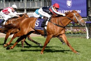 Dalasan can chalk up his maiden Group 1 in Saturday's Epsom Handicap.