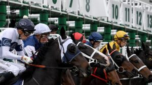 Midweek racing is at Canterbury on Wednesday. Photo: Dan Himbrechts/AAP Image