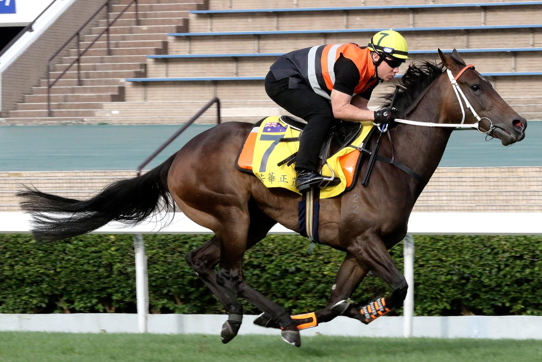 In Her Time gallops in Hong Kong last week.
