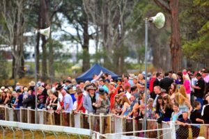 It's Kempsey Cup Day on Friday