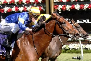 Santa Ana Lane was the star of the show at Flemington on Stakes day.