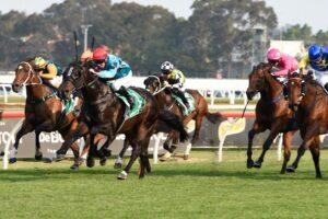 Pierata wins the Redzel Stakes.