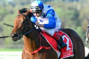 The Bostonian will head to Melbourne for a crack at the 2019 Moir Stakes at The Valley.