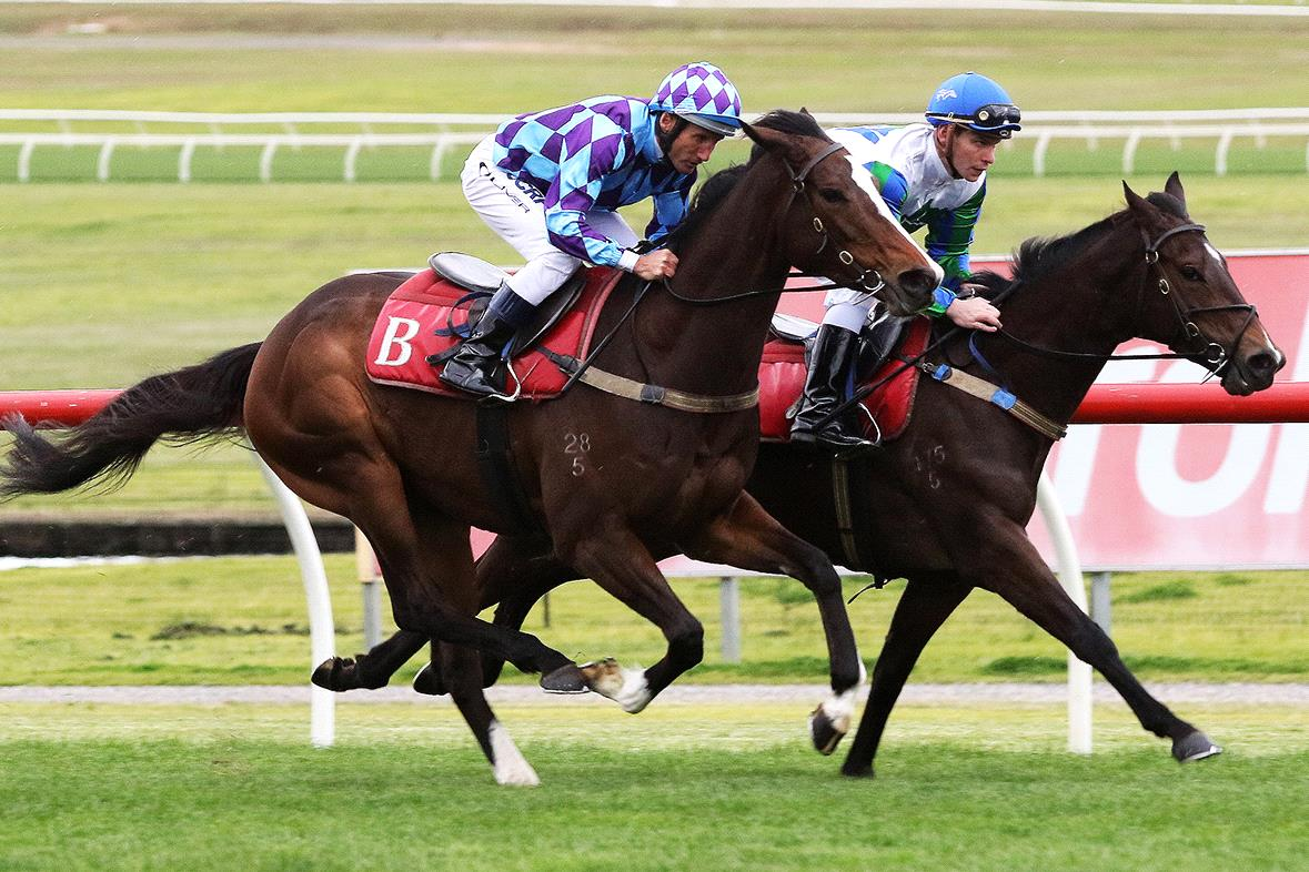 Princess Jenni (outside) goes about her work at Sandown on Wednesday.
