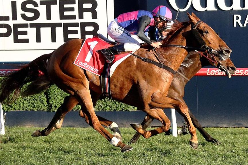 Damien Oliver and Vega Magic will team up again at Caulfield on Saturday.