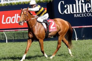 Gailo Chop and Mark Zahra were in action at Monday's Cranbourne trials.