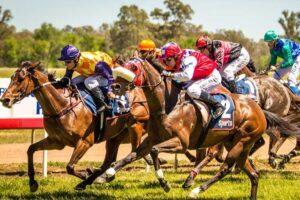 It's Forbes Cup Day on Sunday