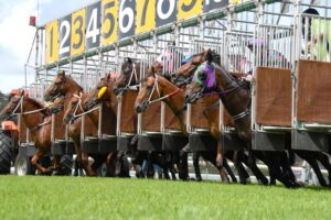 Inside barriers are a huge plus over the 1100m at Armidale
