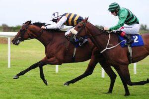 Downdraft winning the Lenebane Stakes.