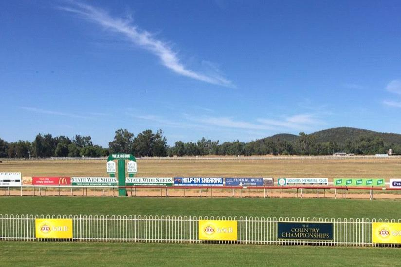 It's Cattleman's Cup Day at Wellington on Tuesday
