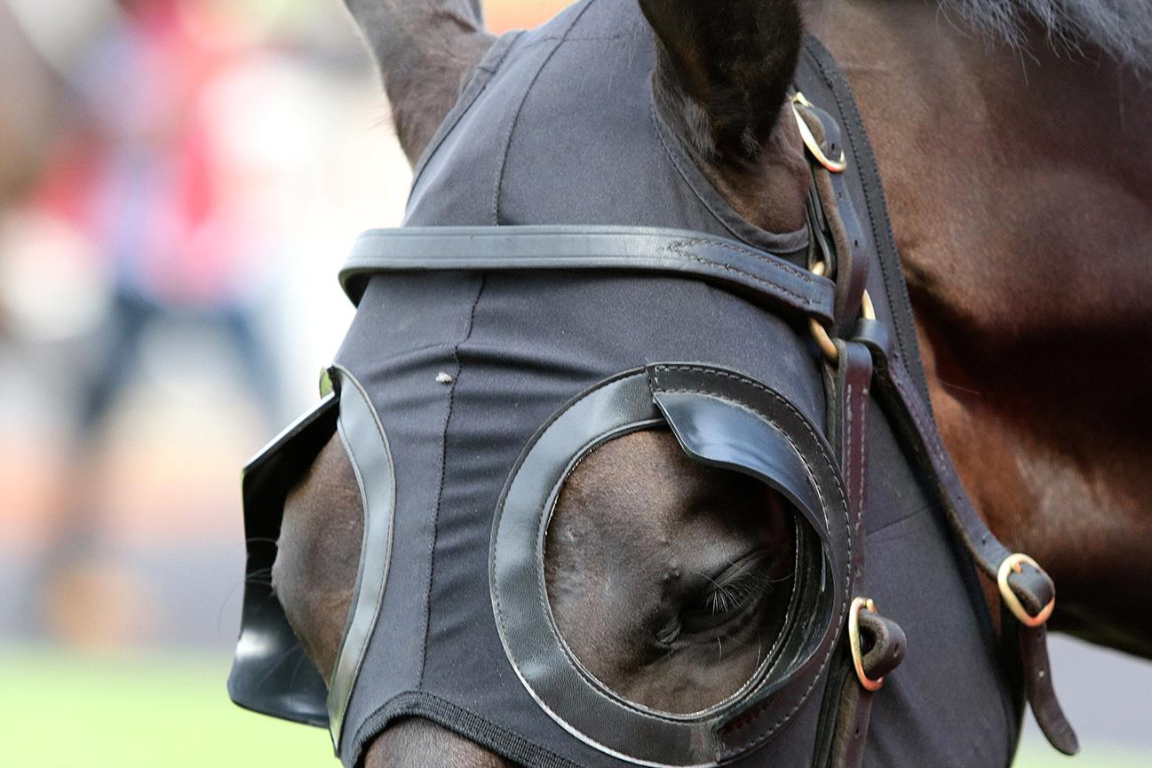 Can blinkers help snap one of the most frustrating runs in racing?