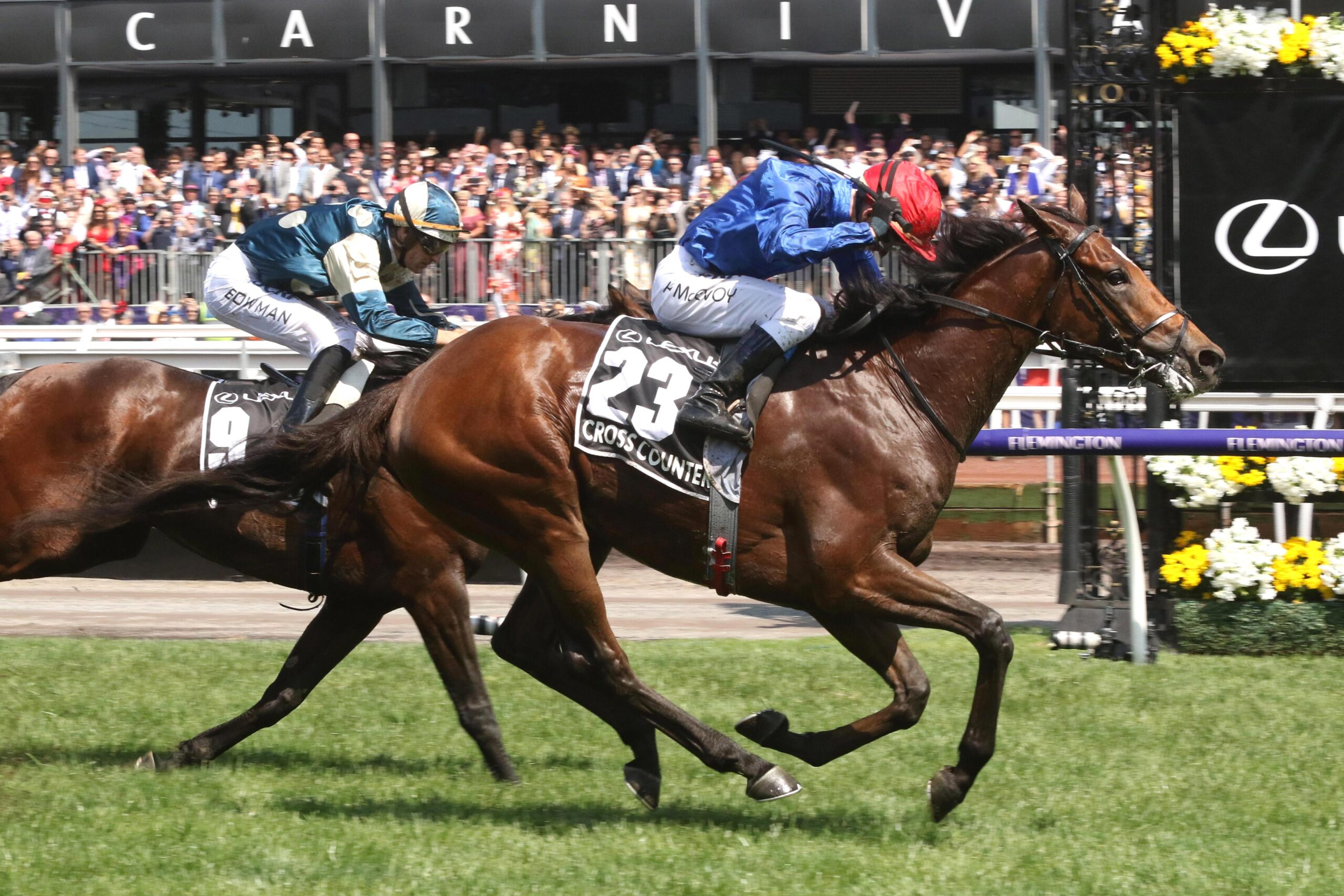 Cross Counter winning the 2018 Melbourne Cup.