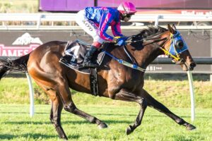This talented mare steps out for the first time since returning home from a stint in Victoria.
