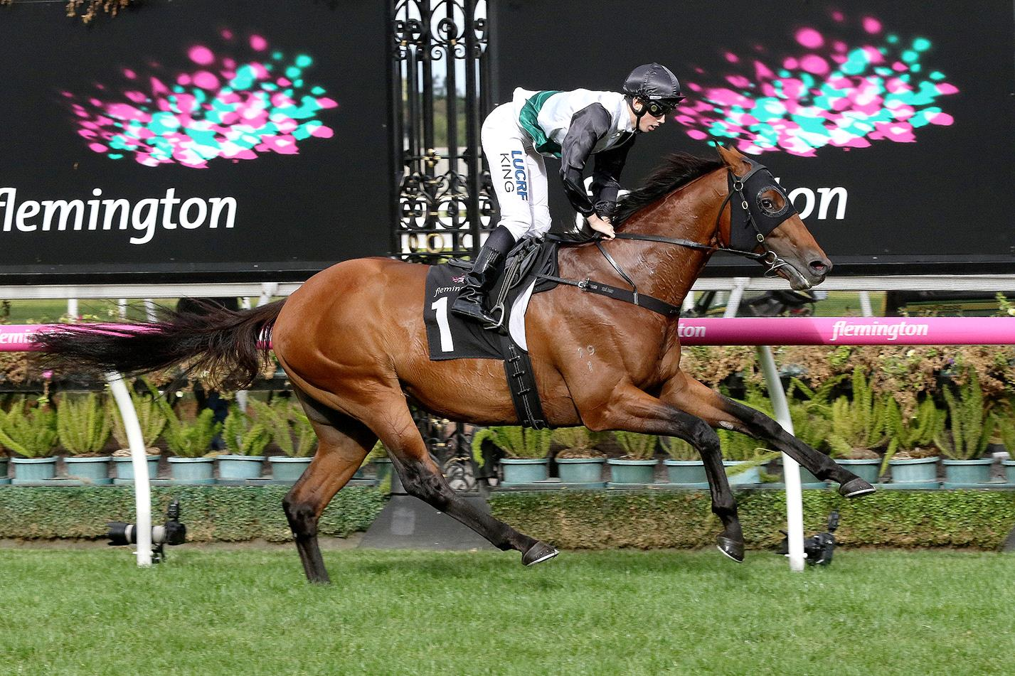 Too bad to be true first-up it wouldn't shock to see a huge turn around from the Caulfield Cup winner.