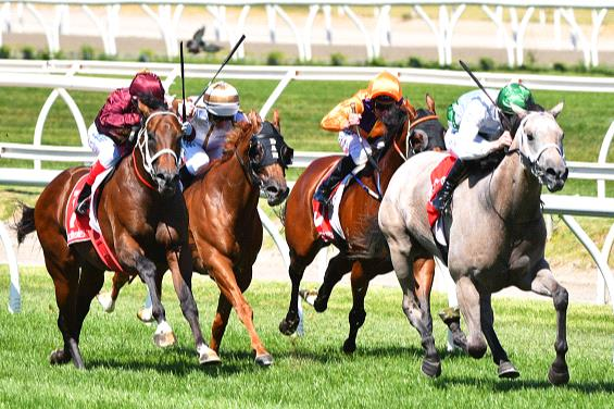 Terbium powers away with the Zeditave Stakes.