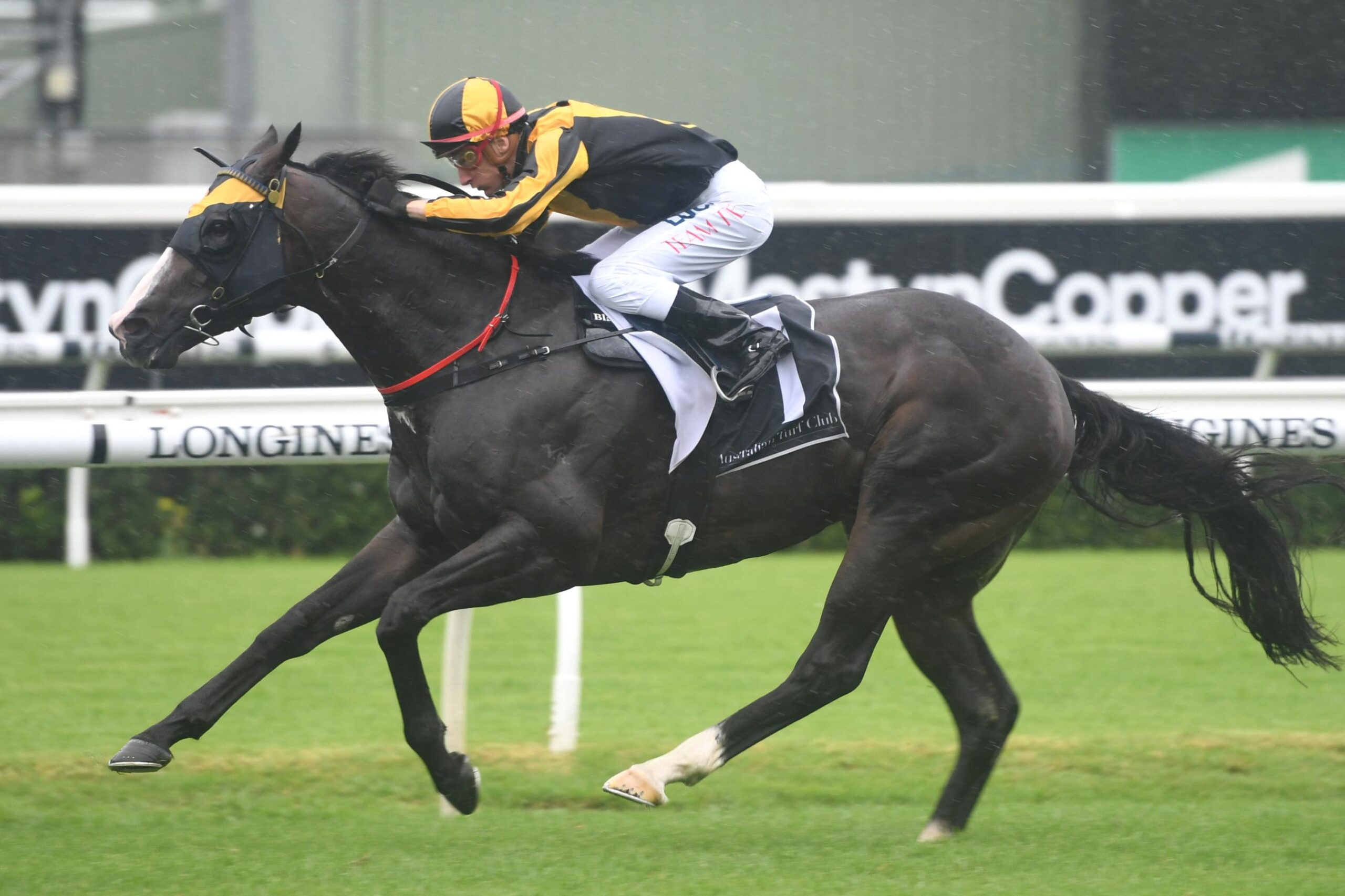 Trapeze Artist will have a shot at another TJ Smith Stakes win.