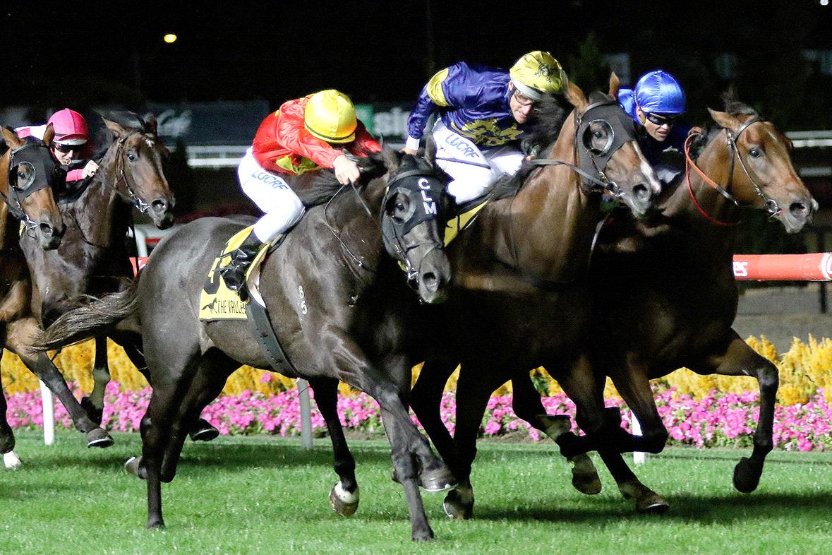 Global Exchange can make it four straight in the ATC Derby.