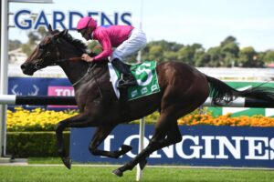 Angel Of Truth could have raced his way into next Saturday's Australian Derby.