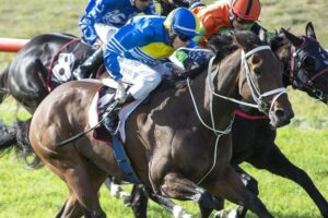 Willie White punching home a winner at Northam.